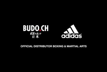 Budo.ch Logo